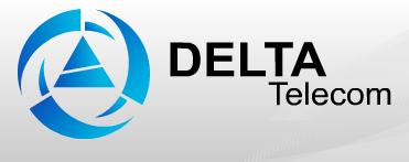 Интернет провайдер DELTA Telecom