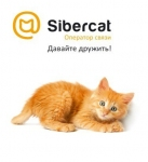 Интернет провайдер Sibercat