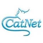 Интернет провайдер CatNet